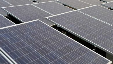 Tigers South Africa unveils renewable energy vertical
