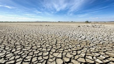 Africa climate change report reveals heat rising north and south, Sahel getting wetter