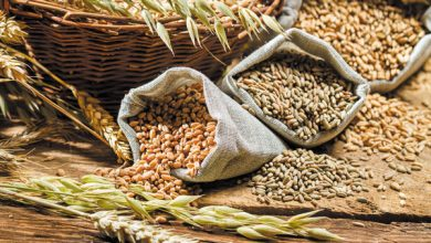 International food prices continue rising in April